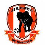 Les Eléphants